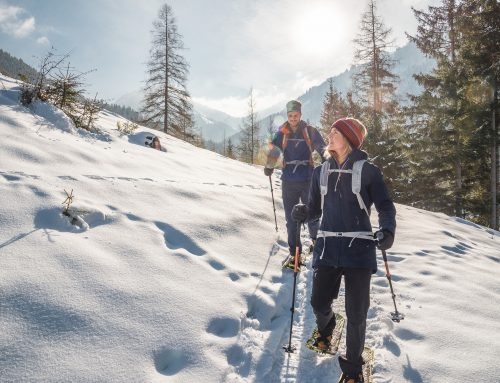 Snowshoeing & winter hiking